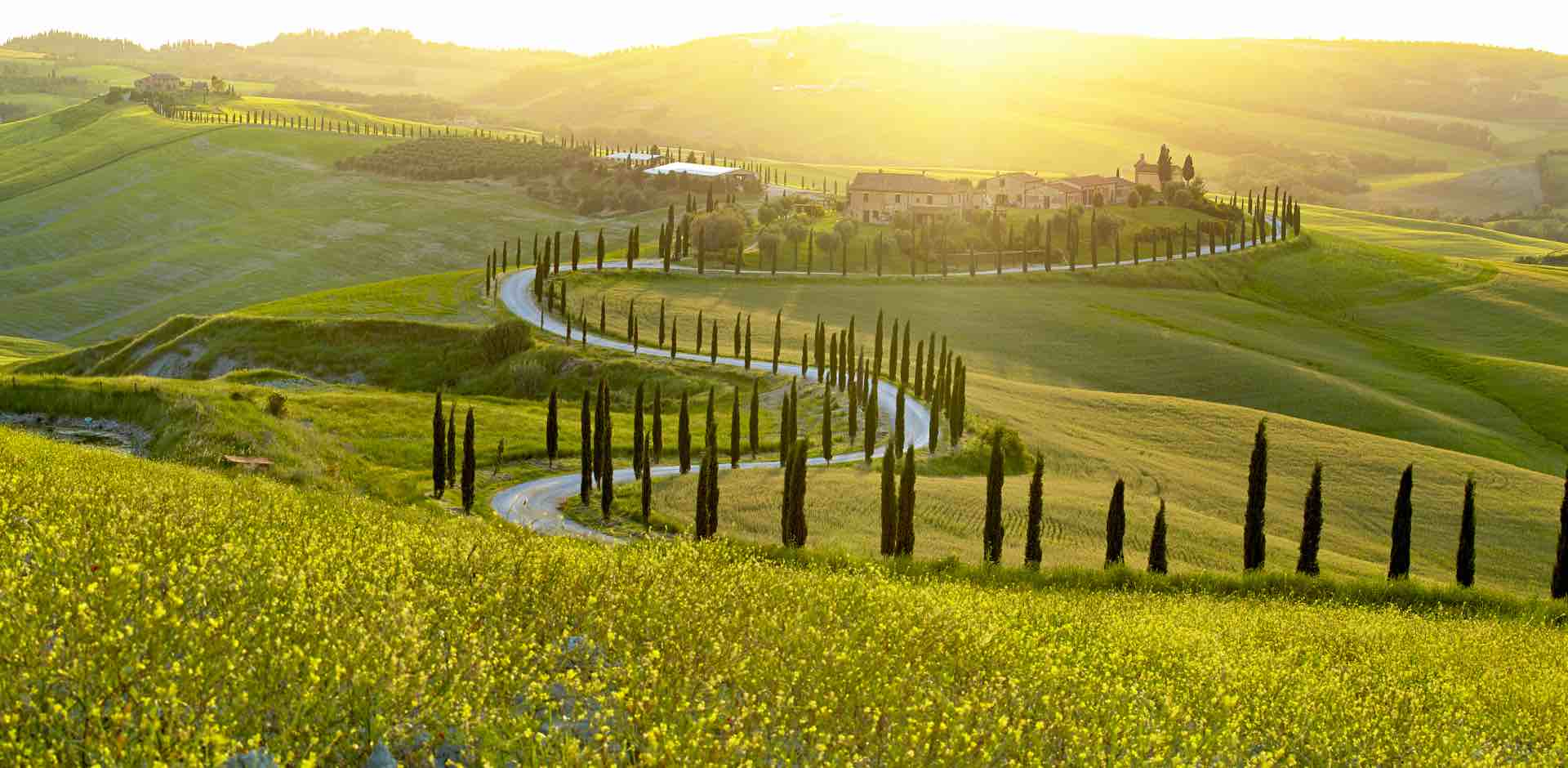 THE HOME OF ITALIAN WINES